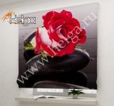 Алая роза Арт.4795-Р